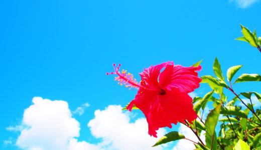 【体験談】沖縄移住で住む場所は「南城市」がオススメな理由